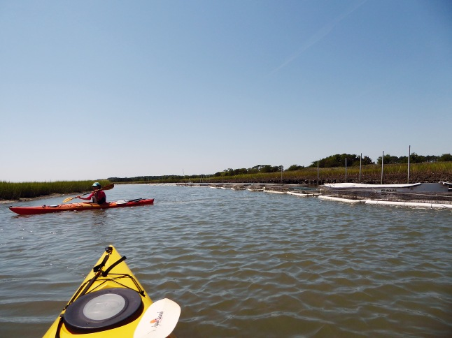 Clam aquaculture floats