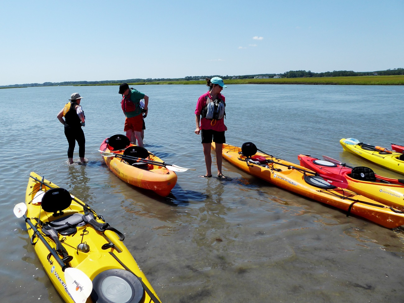 20160827_134139_Rest stop on the mud flat