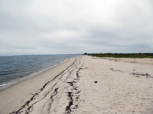 Beach at terminus of Flatcap Basin