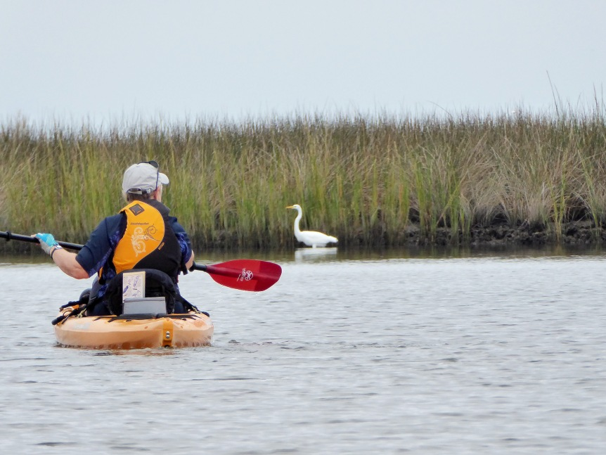 Judy paddles past an egret