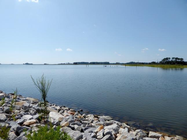 Still waters at Taylor's Landing