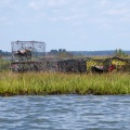20170904_121955_Beached crab traps and floats 1