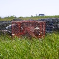 20170904_122055_Beached crab traps and floats 2