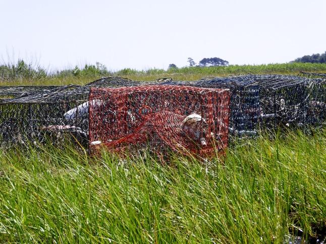Close-up of crab traps