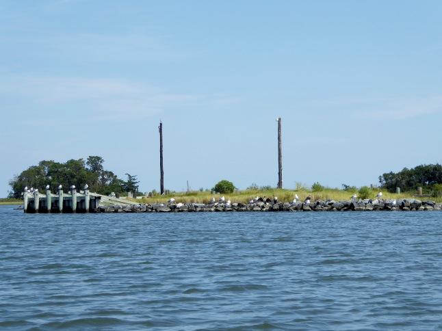 Miles Island Dock Complex