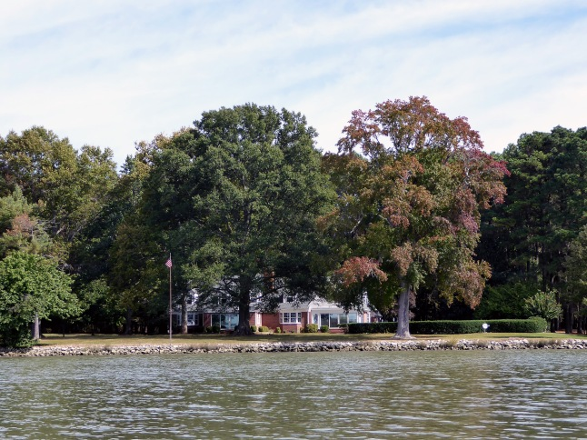 Beautiful homes on Goldsborough Creek