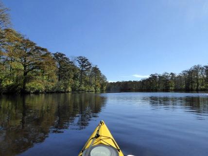 Still waters on the Pocomoke