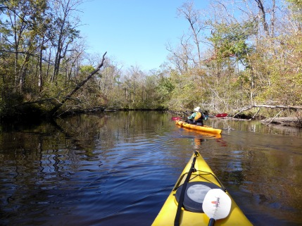 Entering Dividing Creek