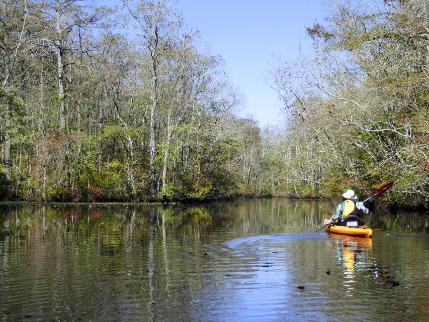 Large Pond Area