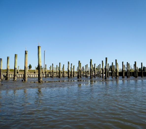 Low Tide at Willis Wharf