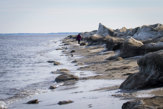 20180109_142535_Judy walking among the ice blocks washed up on Broadkill Beach