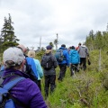 20160526_155226_Hiking up to the muskeg bog