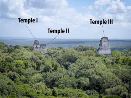View from Temple IV at Tikal