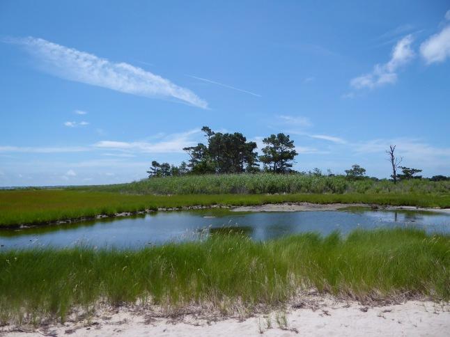 A Miles Island tidal pool