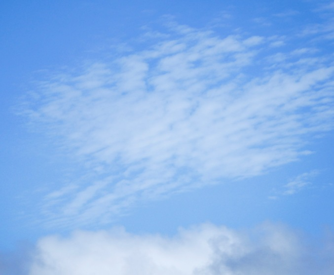 Beautiful rippled clouds in the sky